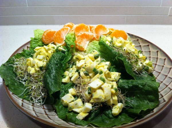Read more about the article Dill-icous Egg White Lettuce Cups