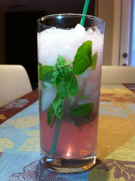 Read more about the article Grapefruit Mojito