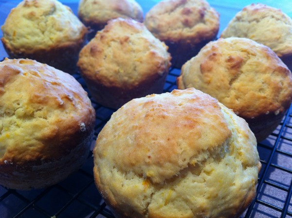 Orange Muffins
