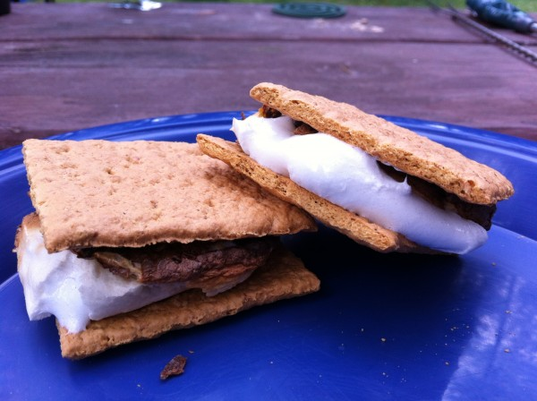 Read more about the article Chocolate Mint S'Mores